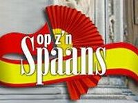 website Spaans groot