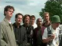 All Stars - Oud zaad