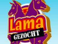 Lama gezocht - 16-2-2007